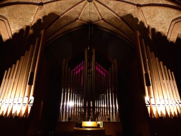 Organ-X_03